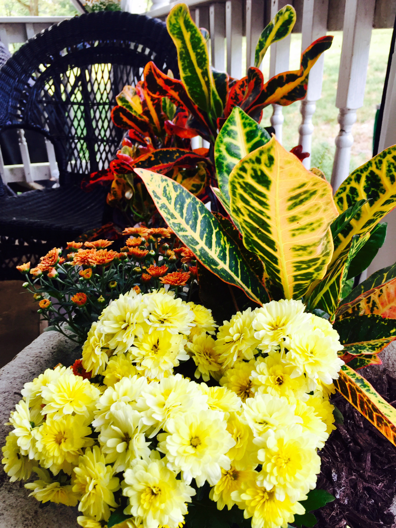 fall-container-garden-option-2